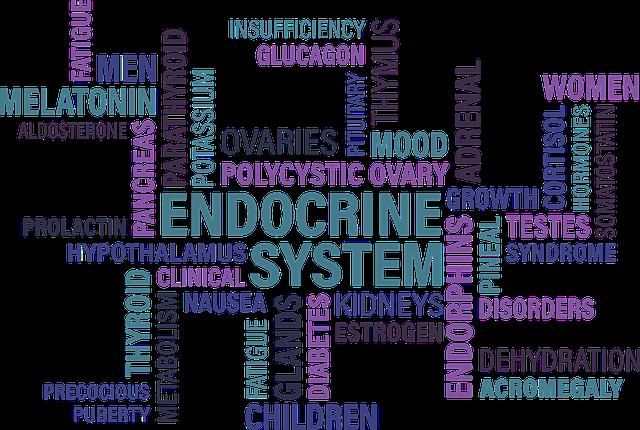 Cholesterin & Hormonsystem - Zusammenhänge?