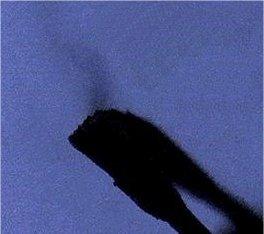 Hg-Ausgasungen von einem 50 Jahre alten Zahn mit Plombe, der 15 Jahr vor der Aufnahme entfernt wurde.