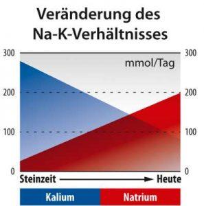 Historisches Natrium / Kalium Verhältnis.