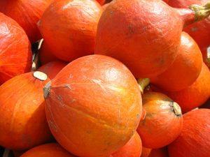 Hokkaidokürbis - eine gute Quelle für Pro-Vitamine (Vorstufufe von Retinol bzw. Vitamin A)
