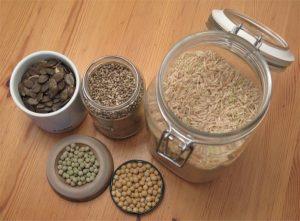 Basis für pflanzliche Proteinpulver: Hanfsamen, Kürbiskerne, Soja, Reis und Erbsen.
