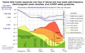 Wachstum der EMF-Belastung über die letzten 100 Jahre