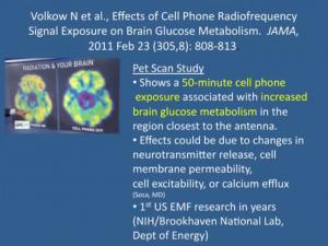 MW EMF verändern den Gehirn-Glukose Metabolismus.