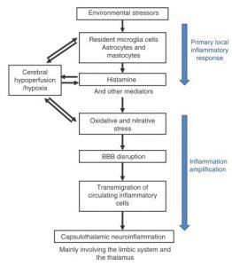 Nach Belpomme vorgeschlagenes hypothetischea EHS / MCS-Erreger Modell - basierend auf EHS / MCS-induzierter Neuroinflammation, zerebral Hypoperfusion, Histamin-Freisetzung, oxidativem / nitrosativem Stress und BBB Störung.