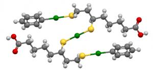 Die Struktur des Komplexes, der aus zwei DHLA-Molekülen, einem Hg2+-Ion und zwei Phenyl-Hg-Gruppen besteht. Quecksilber in grün, Schwefel in gelb und Sauerstoff in rot.