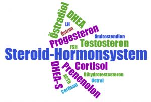 Das Steroid-Hormonsystem.